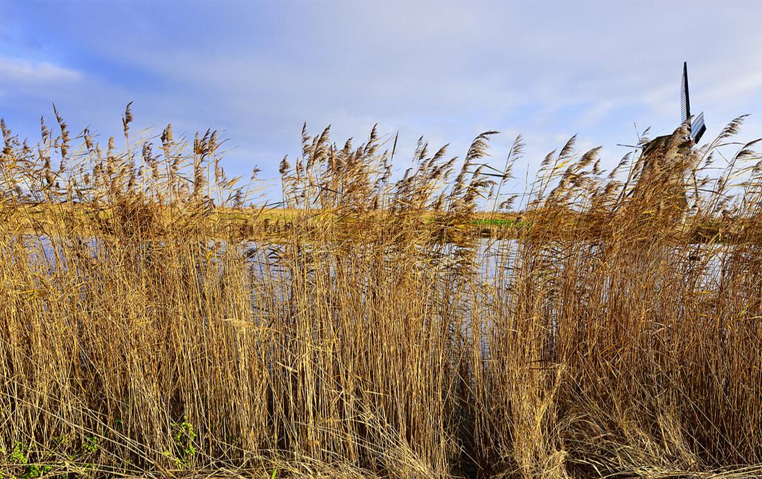 Fietsroute van de week (27) | Giethoorn en omgeving