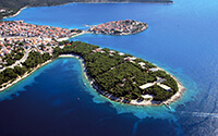 Het bos van Split